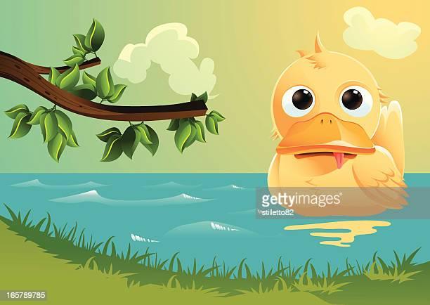 bildbanksillustrationer, clip art samt tecknat material och ikoner med duck swimming - duck