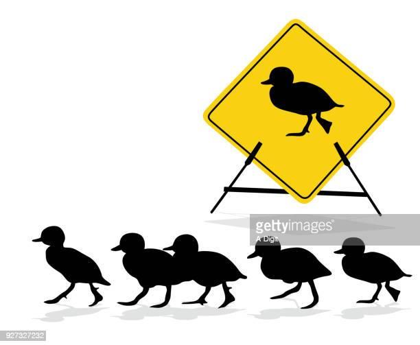 duckling crossing sign - duck bird stock illustrations, clip art, cartoons, & icons
