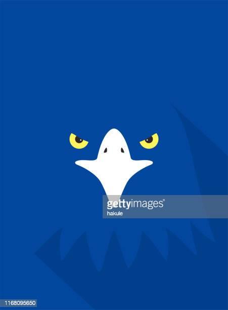 eagle bear face flat icon design. animal icons series. - beak stock illustrations