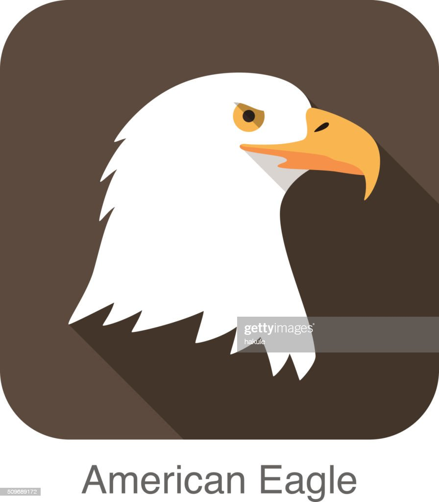 eagle bear face flat icon design. Animal icons series. : stock illustration