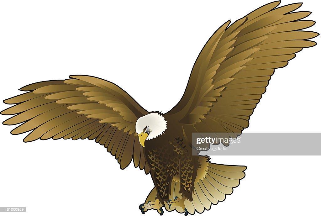 Eagle C