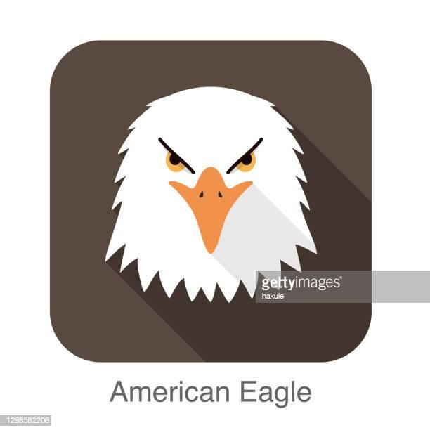 eagle face flat icon design. animal icons series. - beak stock illustrations