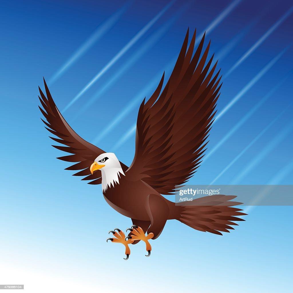 Eagle hawk flying sky bird wildlife motion
