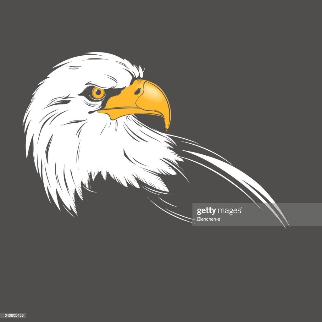 Eagle head on a dark background