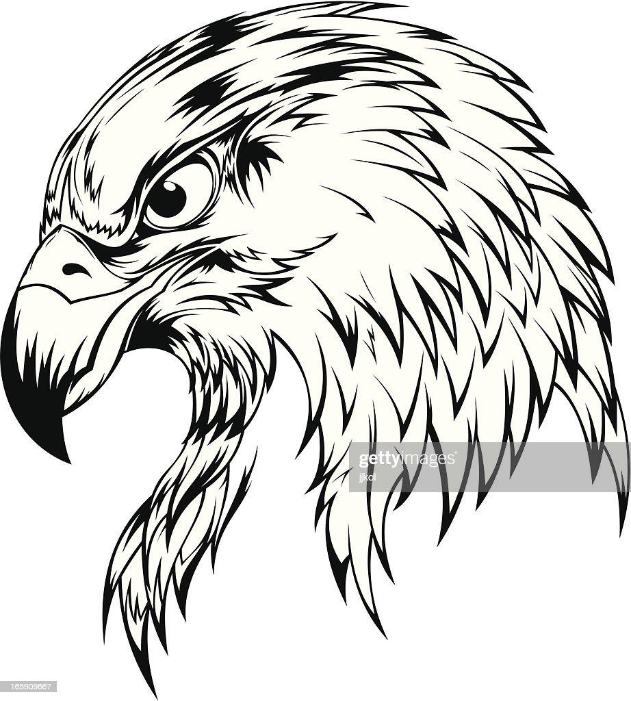 Eagle Head : stock illustration
