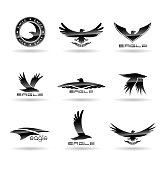 Eagle logo vector design, falcon logotype template, hawk illustration