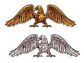 Eagle or hawk golden icon, vector sketch