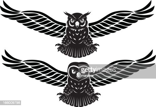 Eagle Owl Vector Art | Getty Images