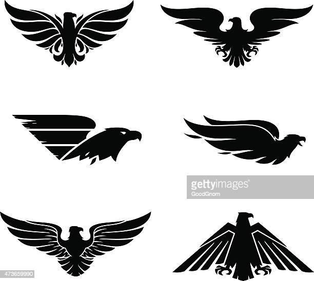 eagle set - hawk bird stock illustrations, clip art, cartoons, & icons