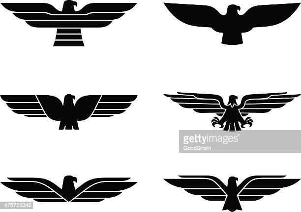 eagle set - animal wing stock illustrations