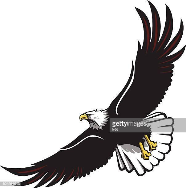 illustrations, cliparts, dessins animés et icônes de soaring eagle - aigle