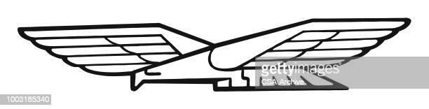 ilustrações, clipart, desenhos animados e ícones de eagle  - asa animal