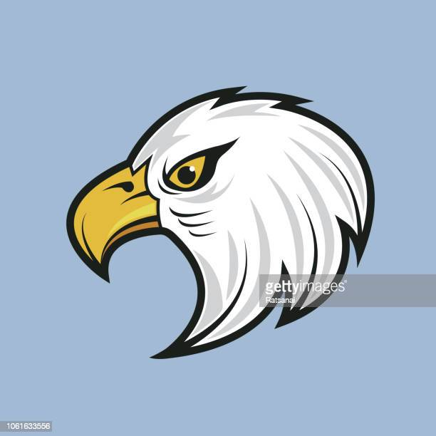 eagle - falcons stock illustrations, clip art, cartoons, & icons
