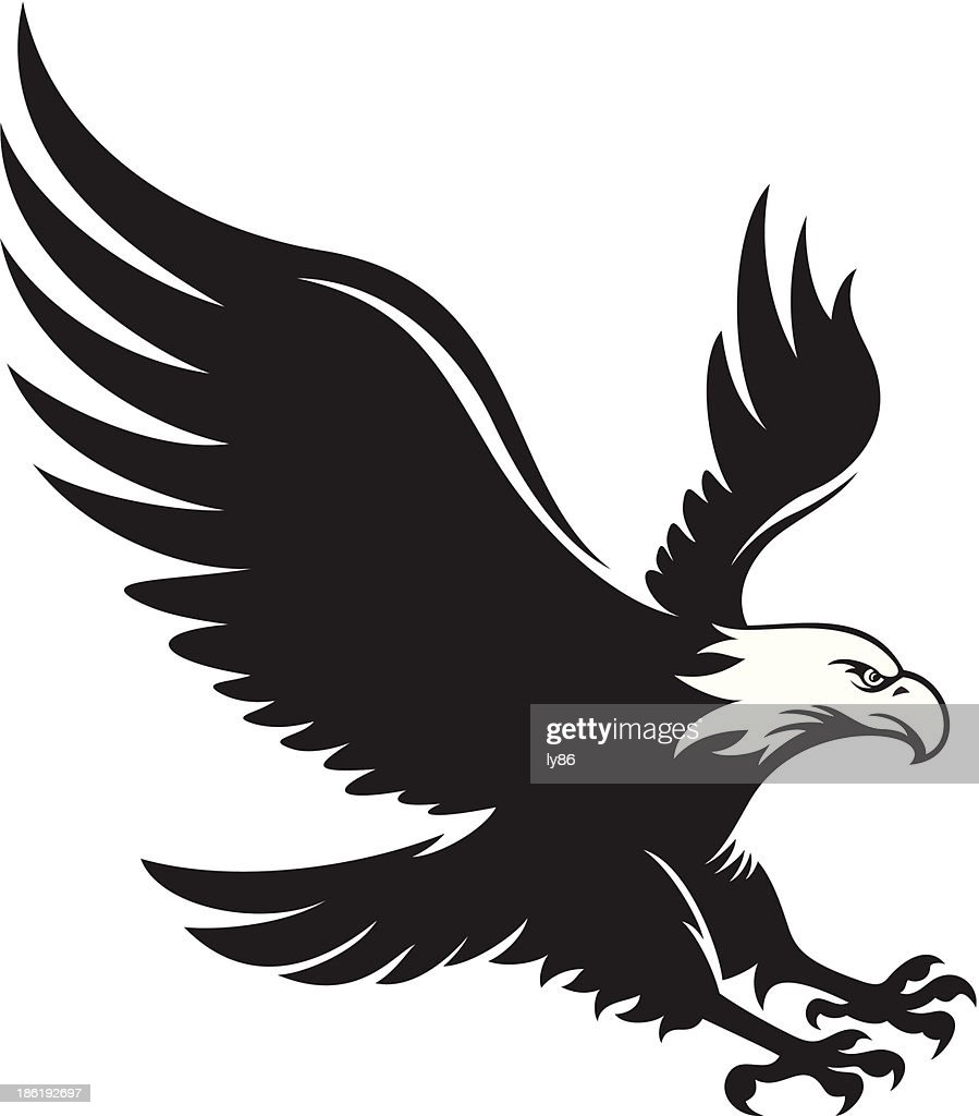 Eagle Vector Art | Getty Images