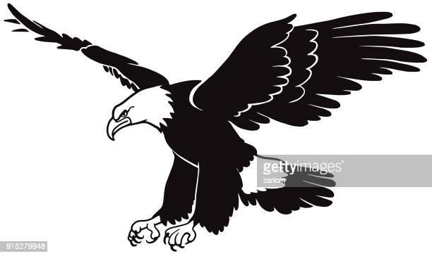 ilustraciones, imágenes clip art, dibujos animados e iconos de stock de eagle  - alas desplegadas