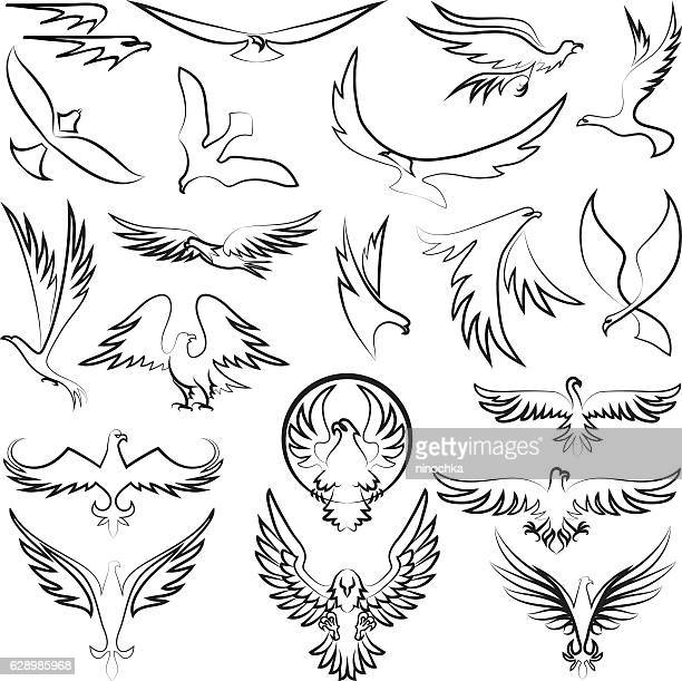 eagles design - hawk bird stock illustrations, clip art, cartoons, & icons