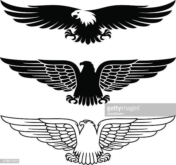 eagles set - adler stock-grafiken, -clipart, -cartoons und -symbole