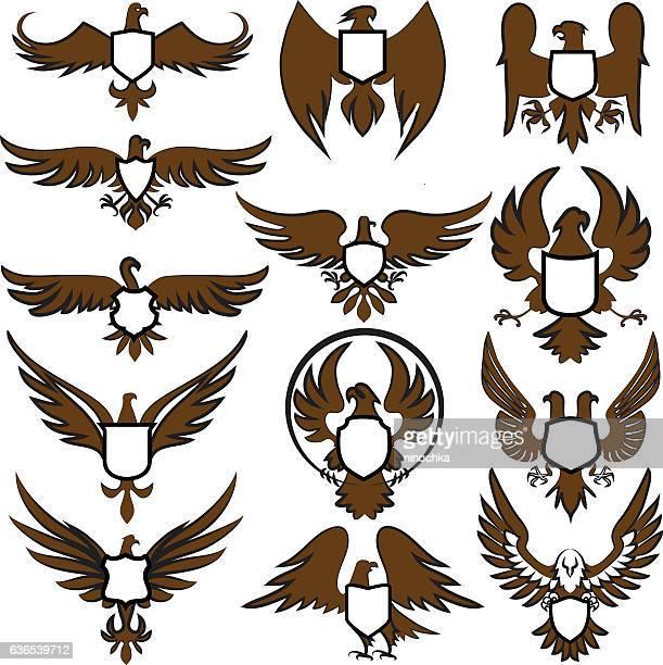 eagles with shields - hawk bird stock illustrations, clip art, cartoons, & icons