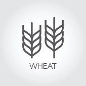 Ear of wheat outline icon. Design element for beer theme, different packaging and products. Vector illustration
