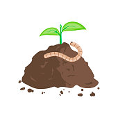 Earthworm and Pile of Ground