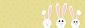 Easter bunnies - panoramic header with copyspace. Vector.