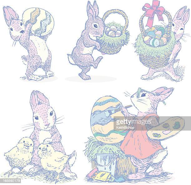 easter bunny collection - lagomorphs stock illustrations
