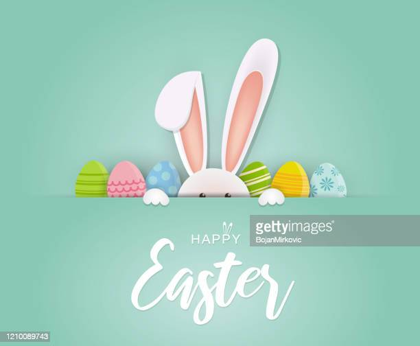 easter card with rabbit and eggs. vector - mammal stock illustrations