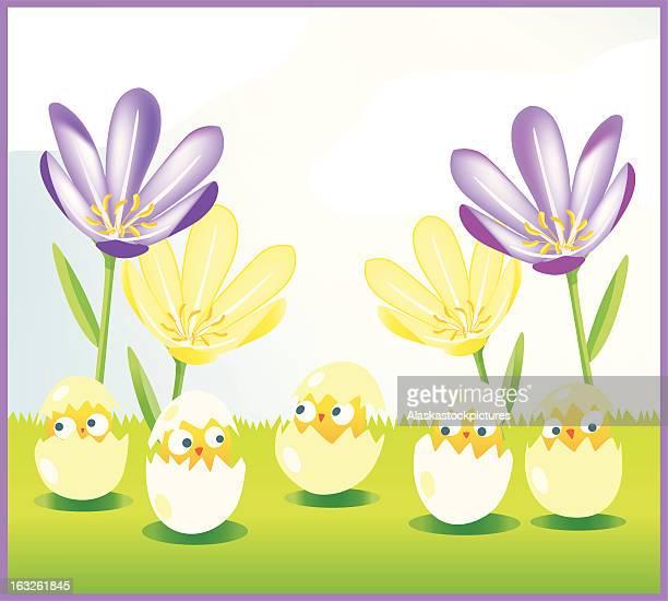 Easter Chicks with BG.