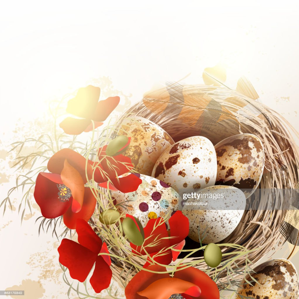 Easter grunge vector background with poppy  flowers bird nest feathers in vintage style