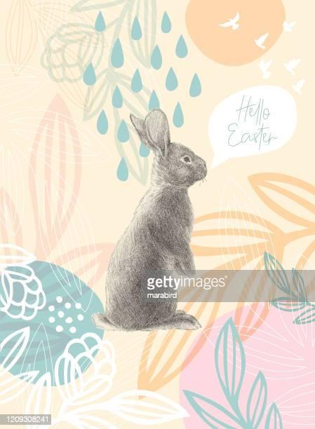 illustrazioni stock, clip art, cartoni animati e icone di tendenza di coniglio di pasqua su motivo floreale messaggio pasquale felice - animali pasquali