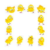Easter square frame with chicks, vector background