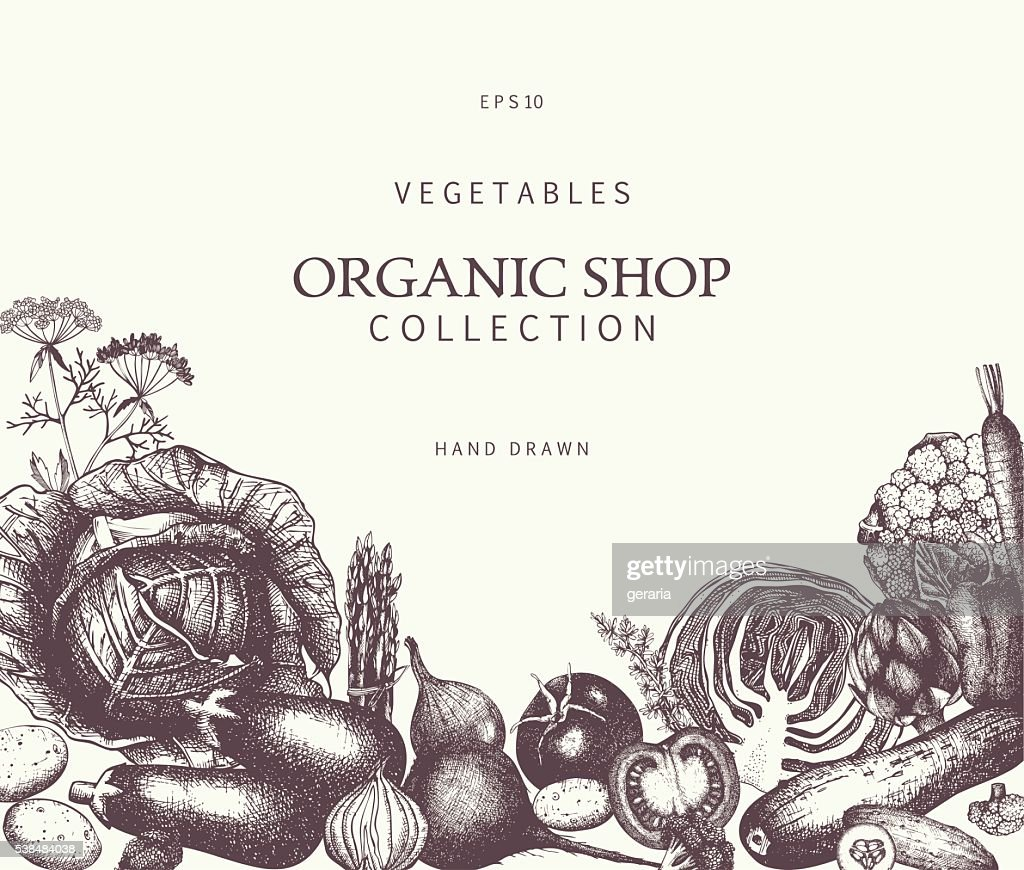 Eco food template with hand drawn vegetables sketch