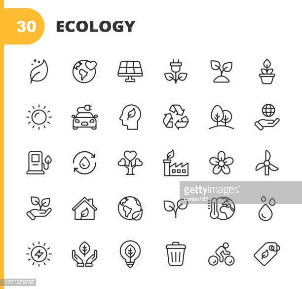 illustrazioni stock, clip art, cartoni animati e icone di tendenza di ecology and environment line icons. editable stroke. pixel perfect. for mobile and web. contains such icons as leaf, ecology, environment, lightbulb, forest, green energy, agriculture, water, climate change, recycling, electric car, solar energy. - immagine
