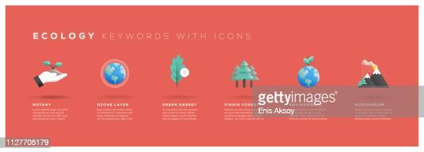 ilustraciones, imágenes clip art, dibujos animados e iconos de stock de palabras clave de ecología con los iconos - ecosistema