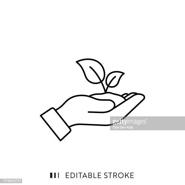 stockillustraties, clipart, cartoons en iconen met pictogram ecologielijn met bewerkbare slag en pixel perfect. - groei
