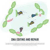 DNA editing nano bots
