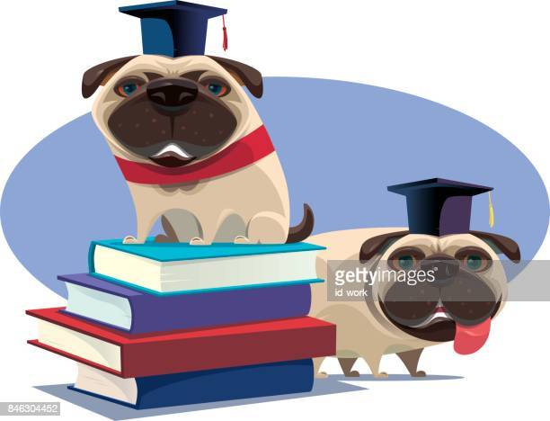 educated pugs and stack of books