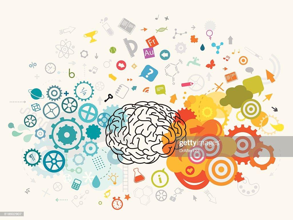 Education Brain Concept