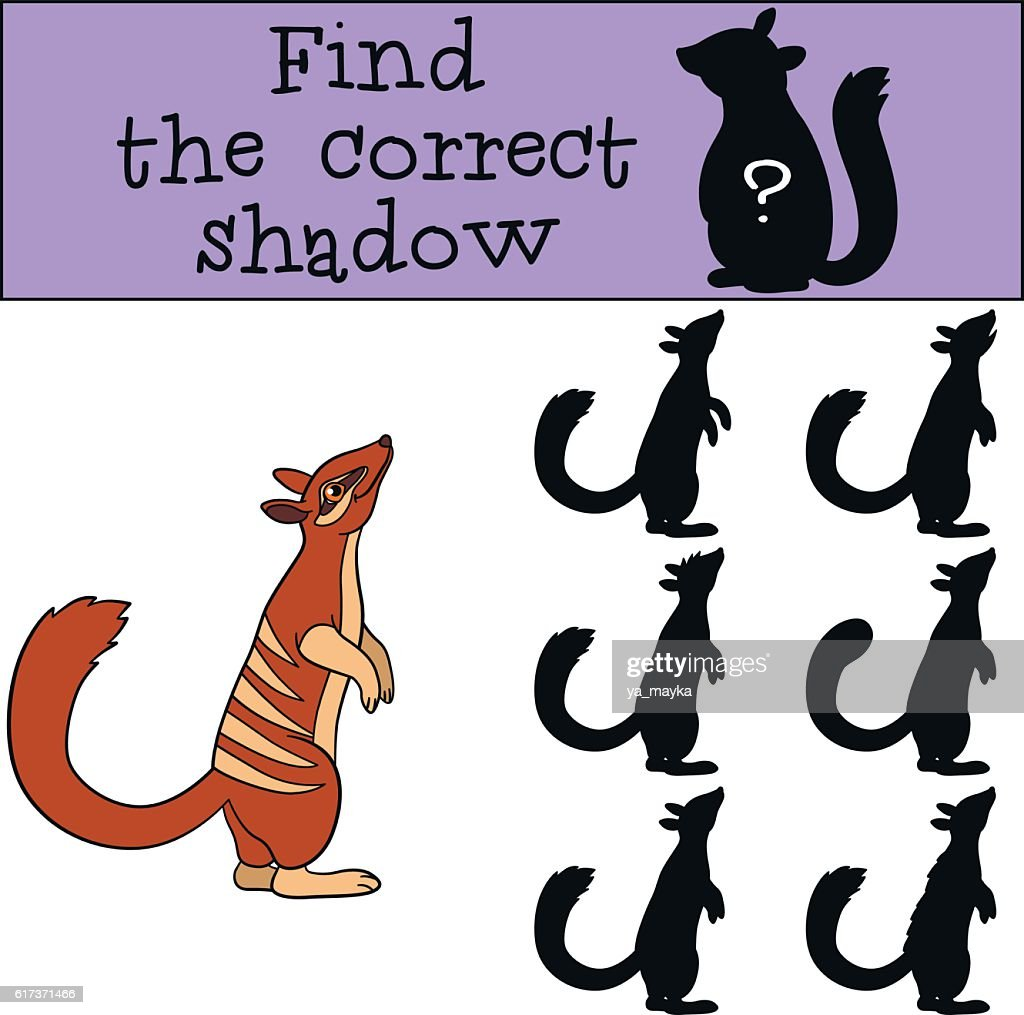 Educational game: Find the correct shadow. Little cute numbat st