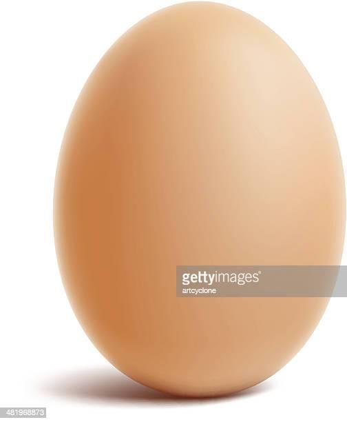 ilustraciones, imágenes clip art, dibujos animados e iconos de stock de huevo - huevo comida básica