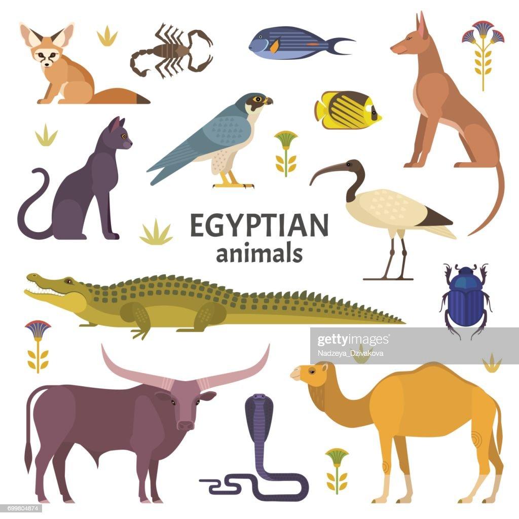 Egyptian animals.