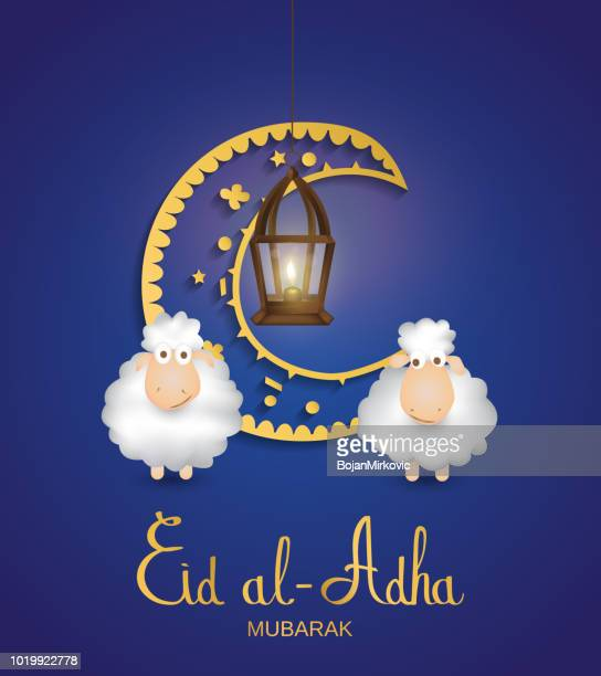 eid al adha mubarak blue card. muslim holiday card with cute sheep, moon and lantern. hand lettering. vector illustration. - eid al adha stock illustrations