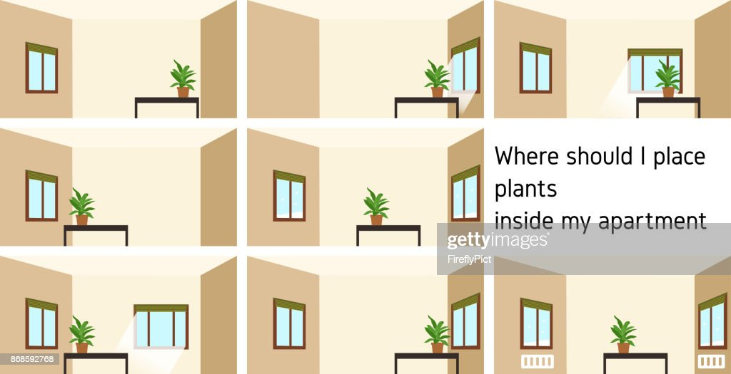 Eight pictures about How to place houseplants around home
