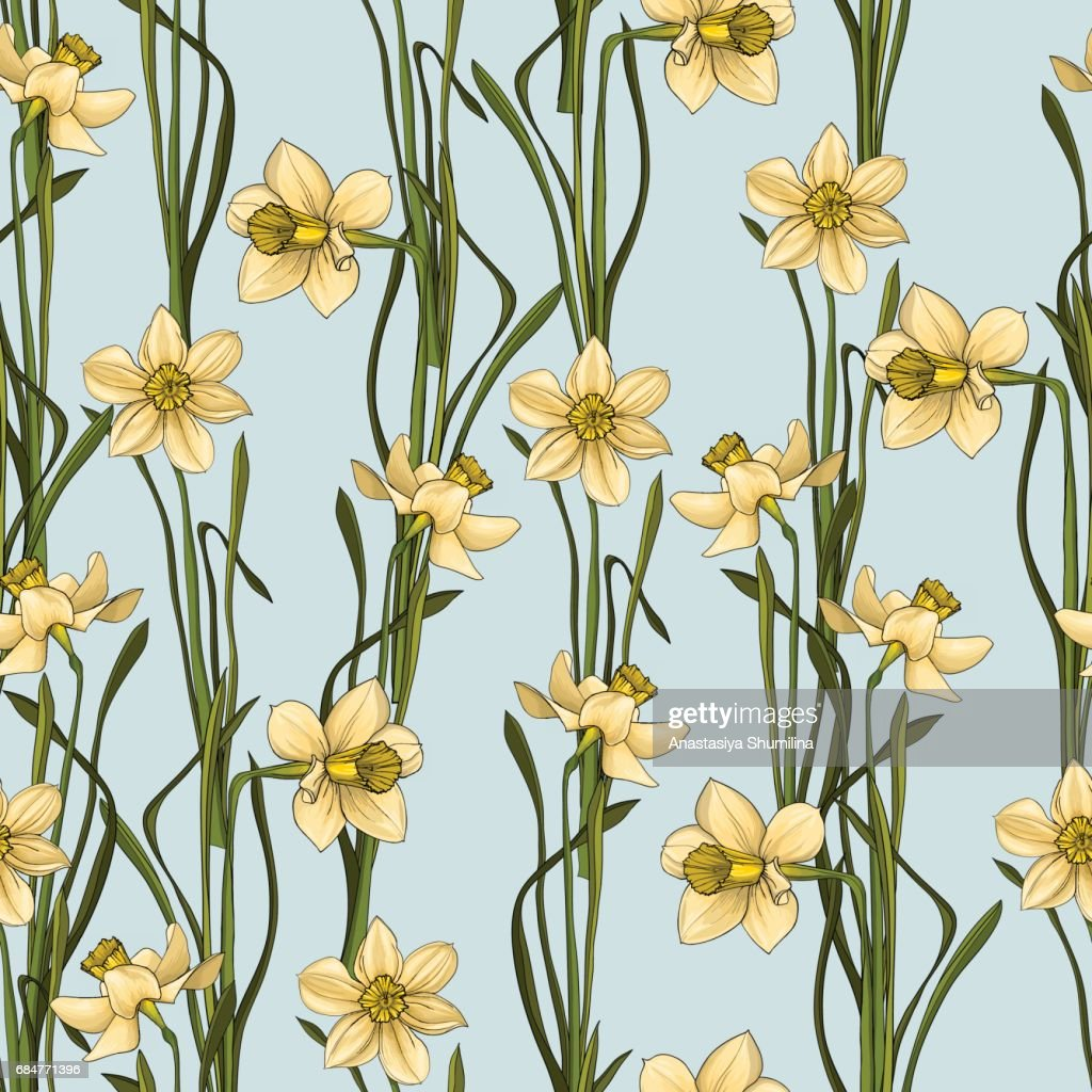 Elegance Seamless pattern with flowers daffodils, vector floral illustration in vintage style