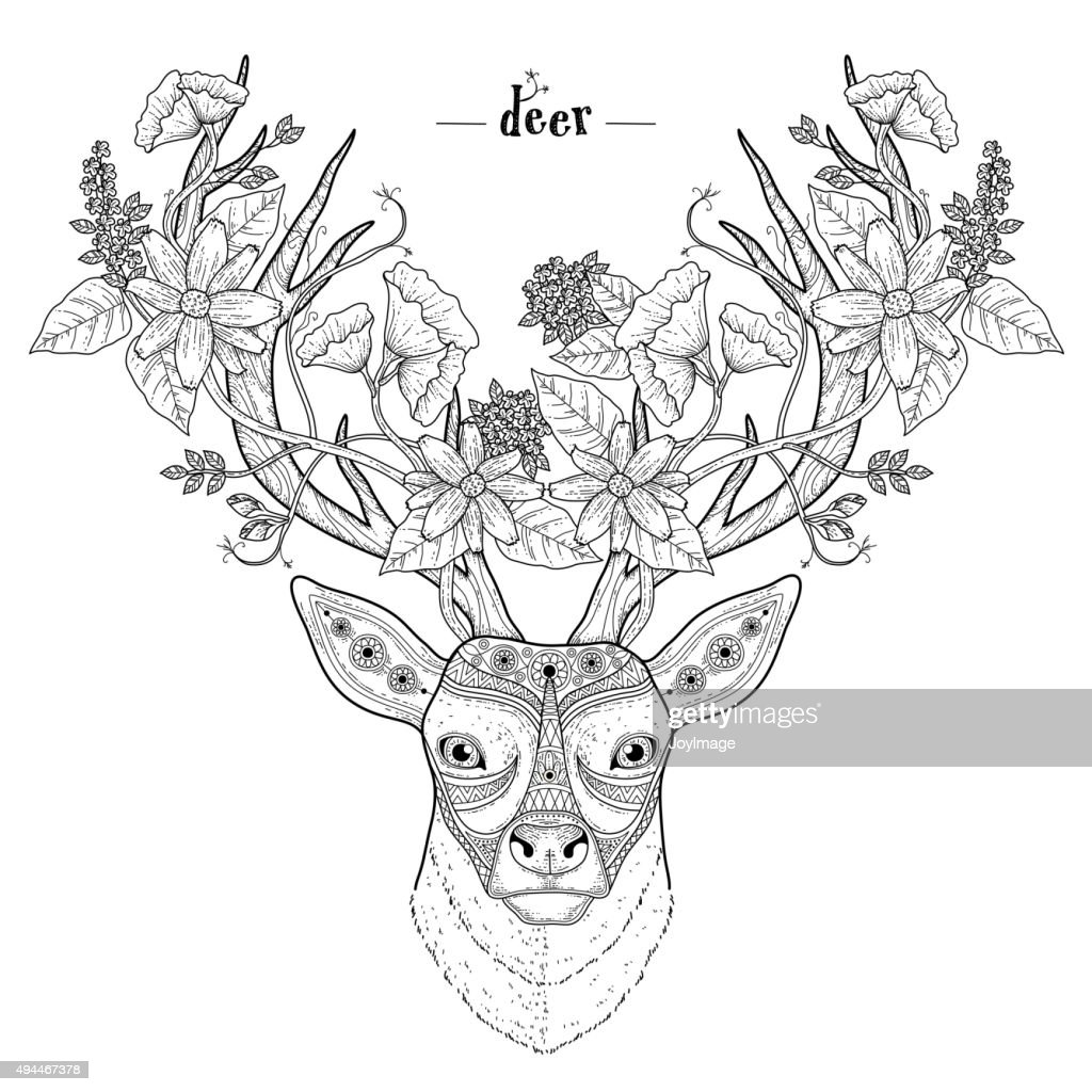 elegant deer head