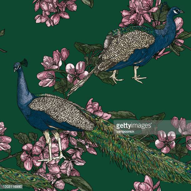 elegant seamless vintage look peacock pattern - brocade stock illustrations