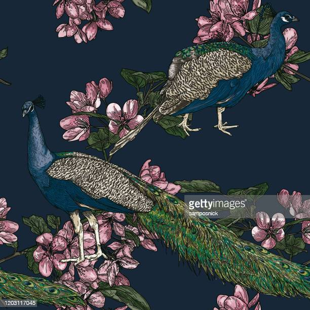 elegant seamless vintage look peacock pattern - graphic print stock illustrations