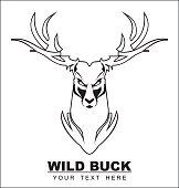 Elegant White wild buck