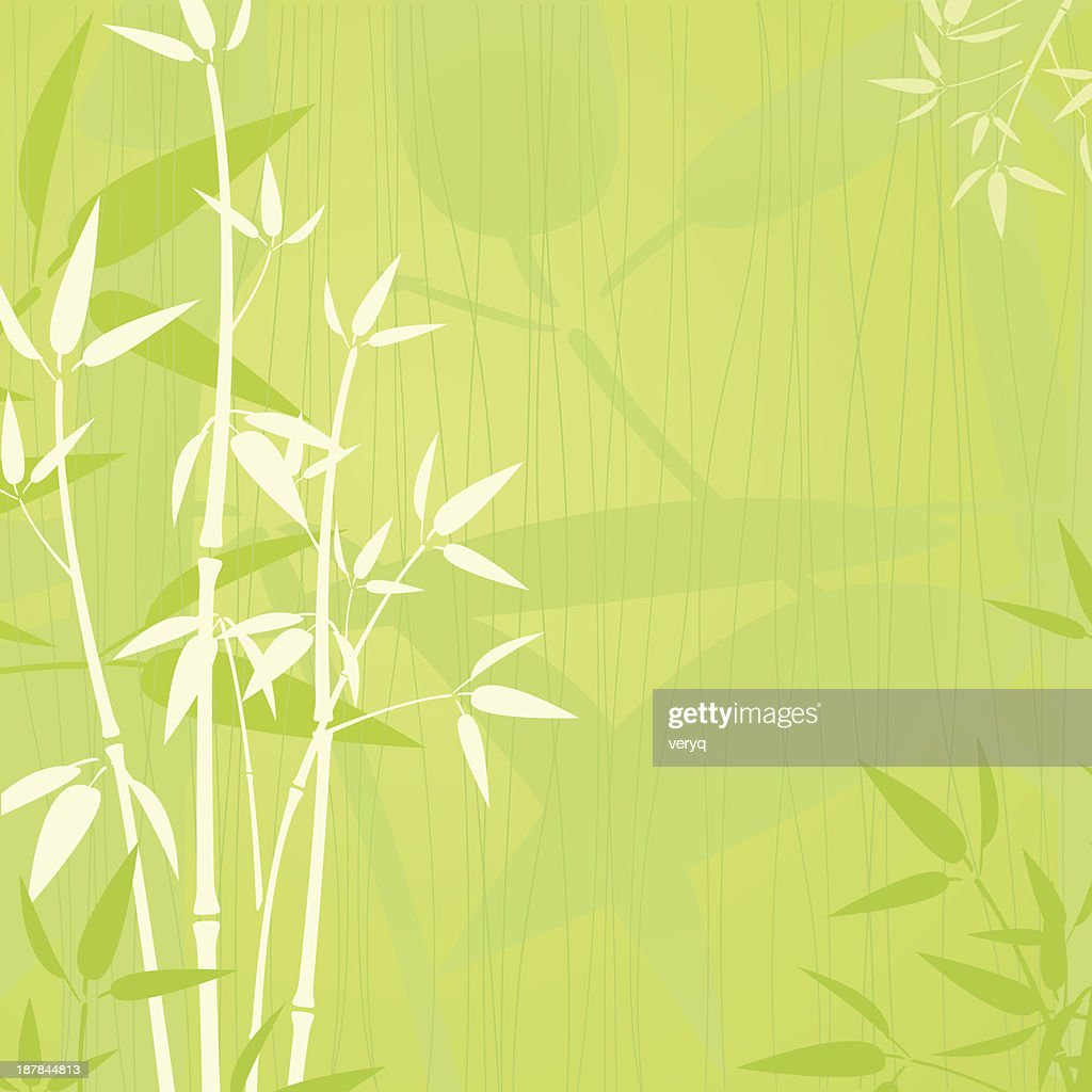 Elegent bamboo background