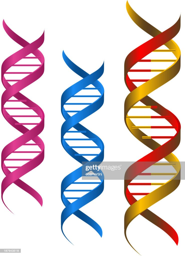 DNA elements pink, blue and a half red half yellow one